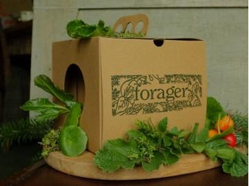Wild Fresh Box